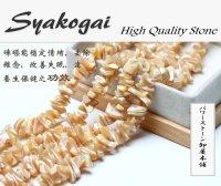 ゴールデンシャコガイ (しゃこ貝) 金シャコ さざれ石 80cm 数珠 卸 SY-20