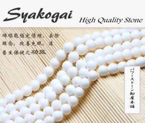 画像1: ホワイトシャコガイ (しゃこ貝) 白シャコ 丸玉 4mm〜16mm ラウンドカット 数珠 卸 SY-6
